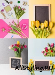 Весенние фоны с тюльпанами и рамками / Spring backgrounds with tulips and frames